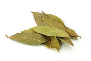 bay-leaves-dry